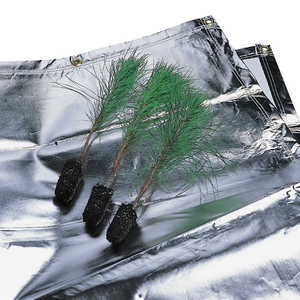 Forestry Suppliers Seedling Protection Tarp, 9' x 10'