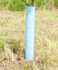 "30"" Protex Pro/Gro Solid Tube Tree Protectors"