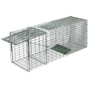 "Model 1100 Duke Single Door Wildlife Cage Trap, 16"" x 5"" x 5"""