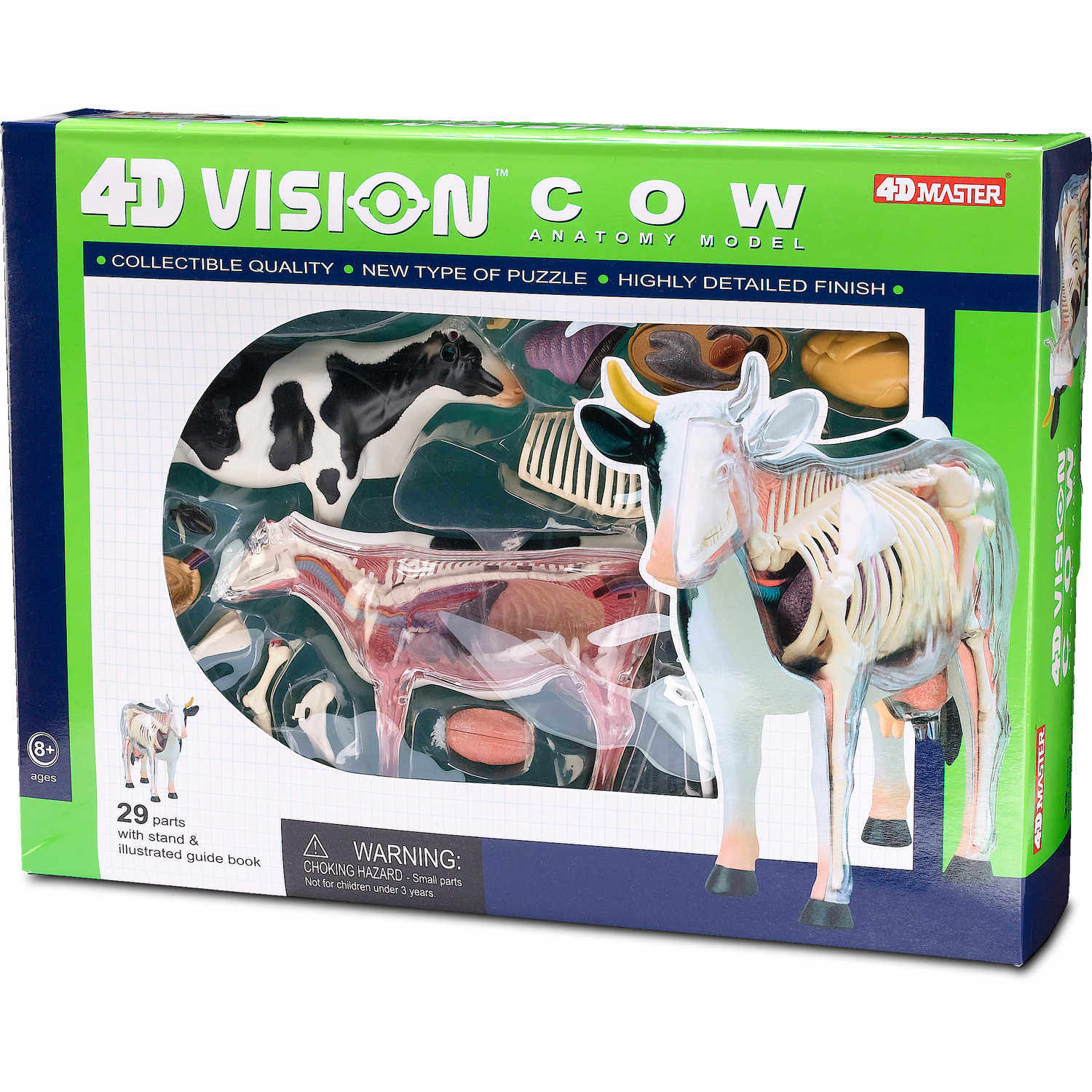 4D Vision™ Cow Anatomy Model